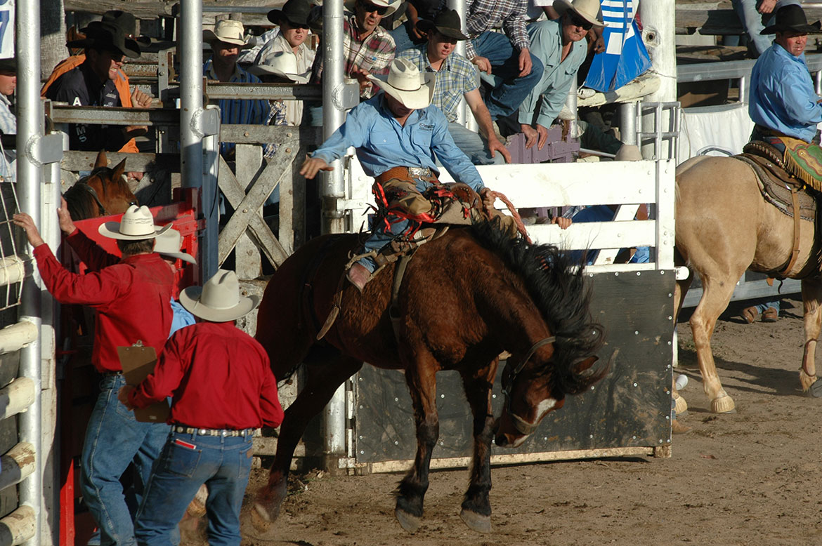 57-Rodeo+Action.jpg
